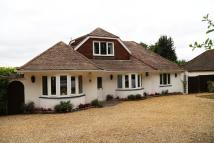4 bed Detached Bungalow for sale in Ridgeway, West Parley...