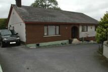 Detached Bungalow for sale in Waungilwen, Llandysul...