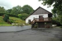Detached home for sale in Cardigan Road, Cenarth...
