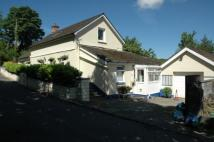 Detached property for sale in Penrherber...