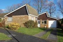 3 bed Detached Bungalow in Alresford