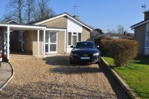 Detached Bungalow for sale in Church Close, Fringford...