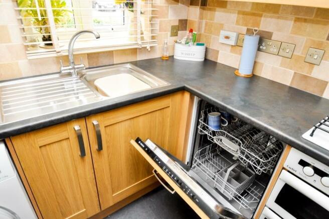 Sink & dishwasher