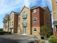 Available October Maes Dewi Pritchard Flat to rent