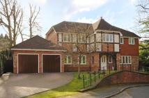 Detached home in Chaucer Grove, Camberley...