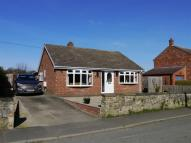 Detached Bungalow for sale in Scruton, Northallerton...