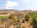 Hills behind