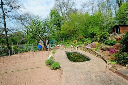 Allotment Area & Gardens