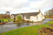 Detached Bungalow for sale in Trefecca, Nr Talgarth