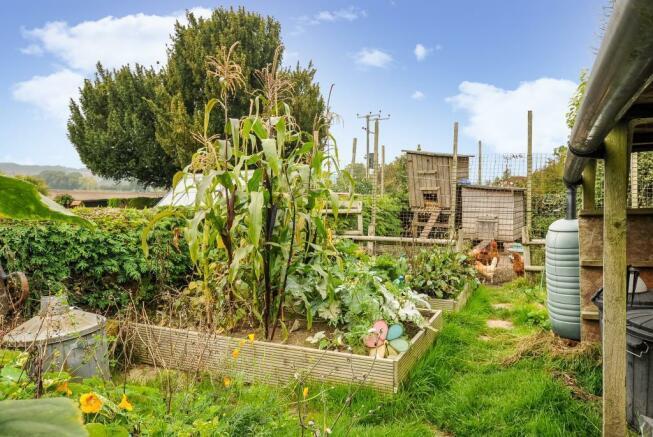 Productive kitchen garden