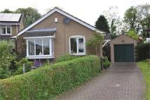 3 bed Detached Bungalow in North Meadow, Ovingham,