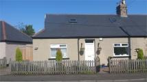 4 bed Semi-Detached Bungalow for sale in Bute Road North...