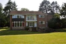 4 bedroom Detached property in Meadowfield Road...