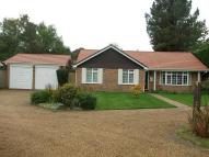 3 bed house to rent in 3 bedroom Detached...