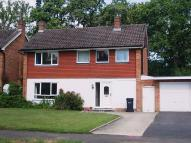 Bookham property to rent