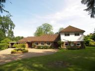 5 bedroom Detached property to rent in East Horsley