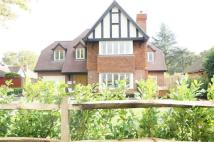 Detached house to rent in East Horsley
