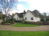 Bungalow in Bookham
