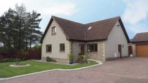 Detached property for sale in Church Gardens...
