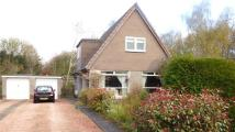 property for sale in Forest View, Polmont, Falkirk, FK2