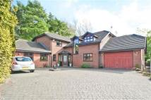5 bed Detached property in Willow Field Grove...