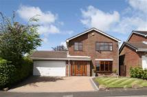 4 bed Detached home in Kestrel Park...