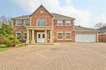 4 bedroom Detached property in The Beeches...