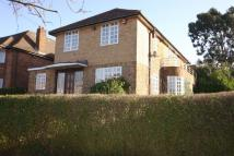 5 bed Detached property to rent in Norrice Lea...