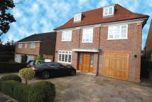 6 bed Detached home to rent in Church Mount...