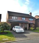 4 bedroom Detached property to rent in Fulmar Close, Mickleover...