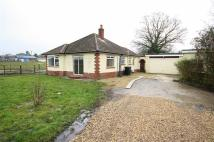 2 bed Detached house to rent in Glissons, Longham...
