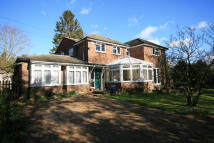 6 bed Detached property for sale in Upperfield, Easebourne...
