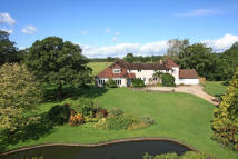 6 bed Detached house in Milland, GU30