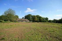 Detached home for sale in Graffham, Petworth, GU28