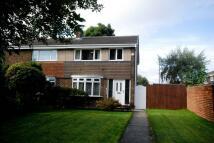 3 bed semi detached property for sale in Hendon Gardens, Jarrow