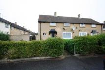 Cambria Gardens semi detached property to rent
