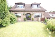4 bed Detached house in Ivor Street, Blackwood...