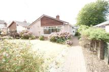Detached Bungalow for sale in Pontygwindy Road...