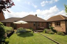 Detached Bungalow for sale in Grove Hill, Highworth...