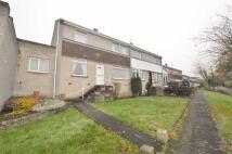 2 bed semi detached house for sale in Longridge, Winlaton