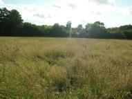 Equestrian Facility property in Llandyssil, Montgomery...