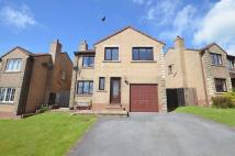 Detached property for sale in Holly Bank, Whitehaven