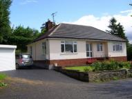 Detached Bungalow to rent in Churchill Road, KINGTON...