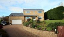 Detached property for sale in Heol Dderwen, Tonteg...