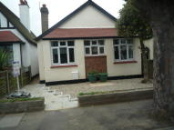 Detached Bungalow to rent in Westbury Road...