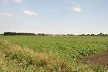 house for sale in Land At Little Acre Fen...