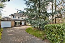Detached house for sale in Gore Tree Road...