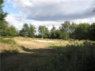 Palace Land for sale
