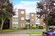 Flat for sale in Village Road...