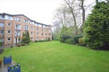 1 bed Flat in 16/39 Queen's Road...